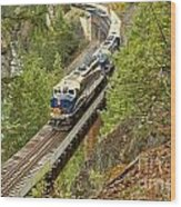 The Rocky Mountaineer Train Wood Print