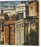 The Roman Forum 2 Wood Print
