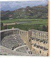 The Roman Theatre In Aspendos Antalya Turkey  Wood Print