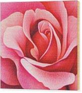 The Rose Wood Print by Natasha Denger