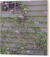 The Rose Shed Wood Print