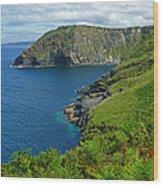 The Rugged Green Shore Wood Print