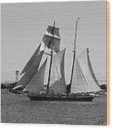 The Sails Wood Print