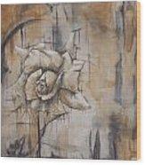 The Salt And The Light Wood Print
