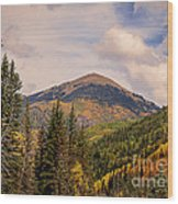 The San Juan National Forest Wood Print