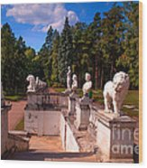 The Satutues Of Archangelskoe Palace. Russia Wood Print