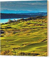 The Scenic Chambers Bay Golf Course - Location Of The 2015 U.s. Open Tournament Wood Print by David Patterson