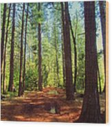 The Scenic Route Wood Print