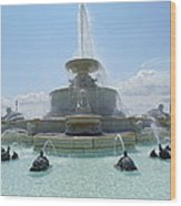 The Scott Fountain On Belle Isle Wood Print
