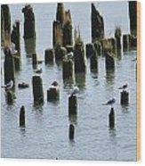 The Sea Gulls Wood Print