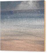 The Seagull Wood Print