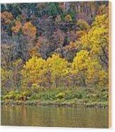 The Season Of Yellow Leaves Wood Print