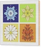 The Seasons Wood Print