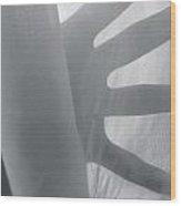 The Secret Sheets Wood Print