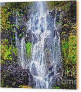 The Seduction Of Water Wood Print
