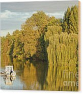 The Seine At Bonnieres Wood Print by Olivier Le Queinec