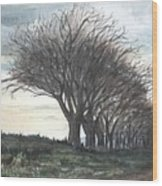 The Sentinels Wood Print