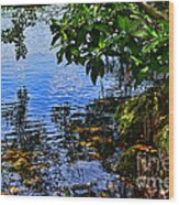 The Serenity Of Mind Wood Print