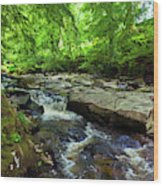 The Shankhill River Shortly Wood Print