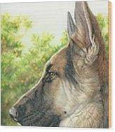 The Shepherd Watching Wood Print