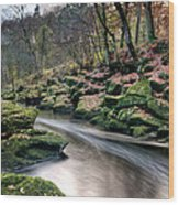 The Shimmering Strid Wood Print