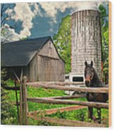The Silo Horse Wood Print