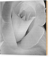 The Silver Rose In Portrait Wood Print
