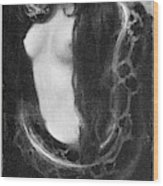 The Sin, 1893 Wood Print