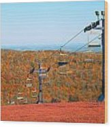 The Skiing Fields In Autumn Wood Print