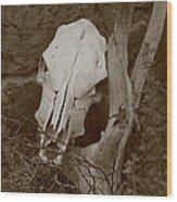 The Skull Wood Print