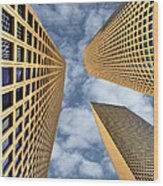 The Sky Is The Limit Wood Print by Ron Shoshani