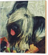 The Skye  Terrier Tilt   Wood Print