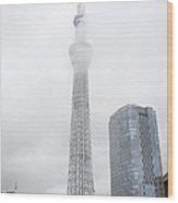 The Skytree In Tokyo Wood Print