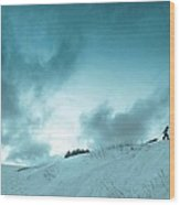 The Sledding Hill Wood Print by Mary Amerman