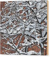 The Snow And The Wall Wood Print by Frederico Borges