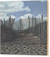 The Snow Fence Wood Print