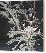 The Snowy Tree Wood Print