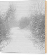 The Snowy Winter Path Wood Print