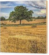The Solitary Farm Tree Wood Print