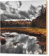 The South End Of Cary Lake Wood Print