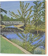 The South Nation River At Spencerville Historic Mill Wood Print