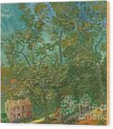 The South Of France Wood Print