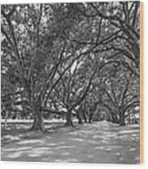 The Southern Way Bw Wood Print