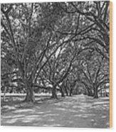 The Southern Way Bw Wood Print