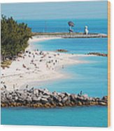 The Southernmost Non-free Beach Wood Print