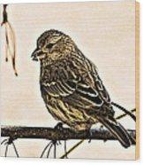 The Sparrow  Wood Print