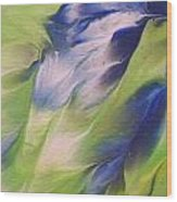 The Spirit Of A Hummingbird Wood Print