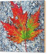 The Spirit Of Autumn Wood Print
