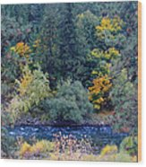 The Spokane River In The Fall Colors Wood Print