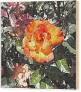 The Spring Rose Wood Print